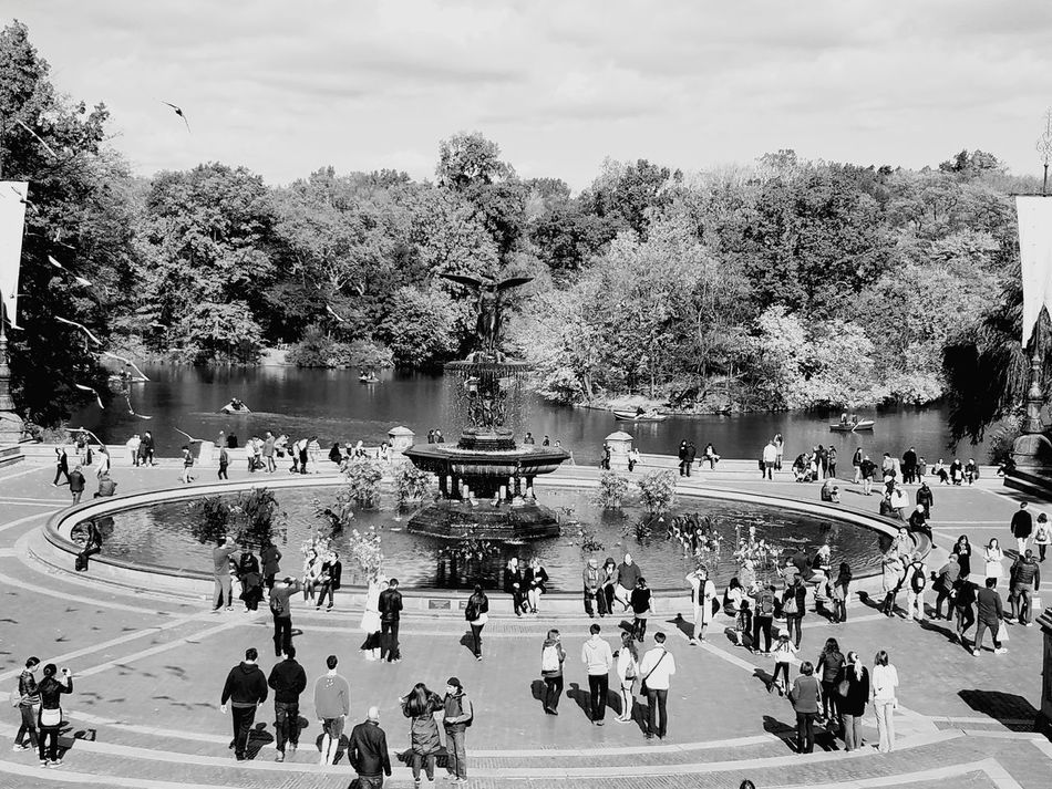 People Watching People Large Group Of People Central Park, New York New York New York City Fountain Check This Out Crowd Day Outdoors Real People Adult Sky Architecture Water Tree Black And White Portrait People Photography People Interacting Travel Travel Destinations