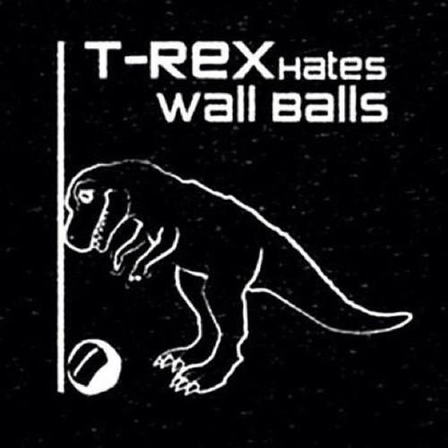 He is not the only one! Crossfit Wallballs 13 .3