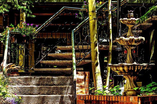 I came upon a random Courtyard  Stairways Flowers The Street Photographer - 2015 EyeEm Awards Stairs Urban Exploration Eye4photography  Fountain Architecture Urban