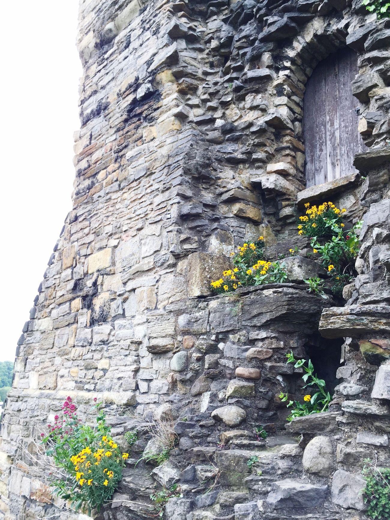Castle Richmond Yorkshire Dales