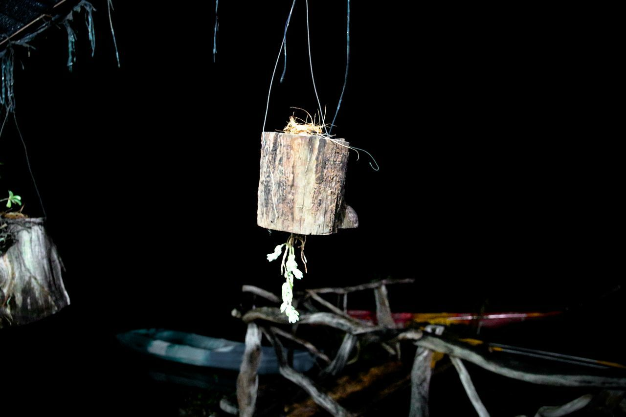 Log Hanging At Night