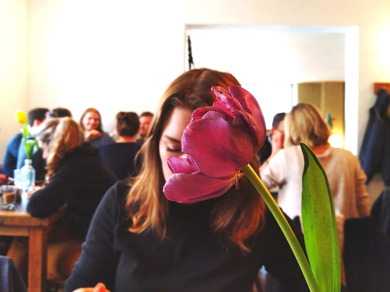 Friendship Togetherness Flower Head