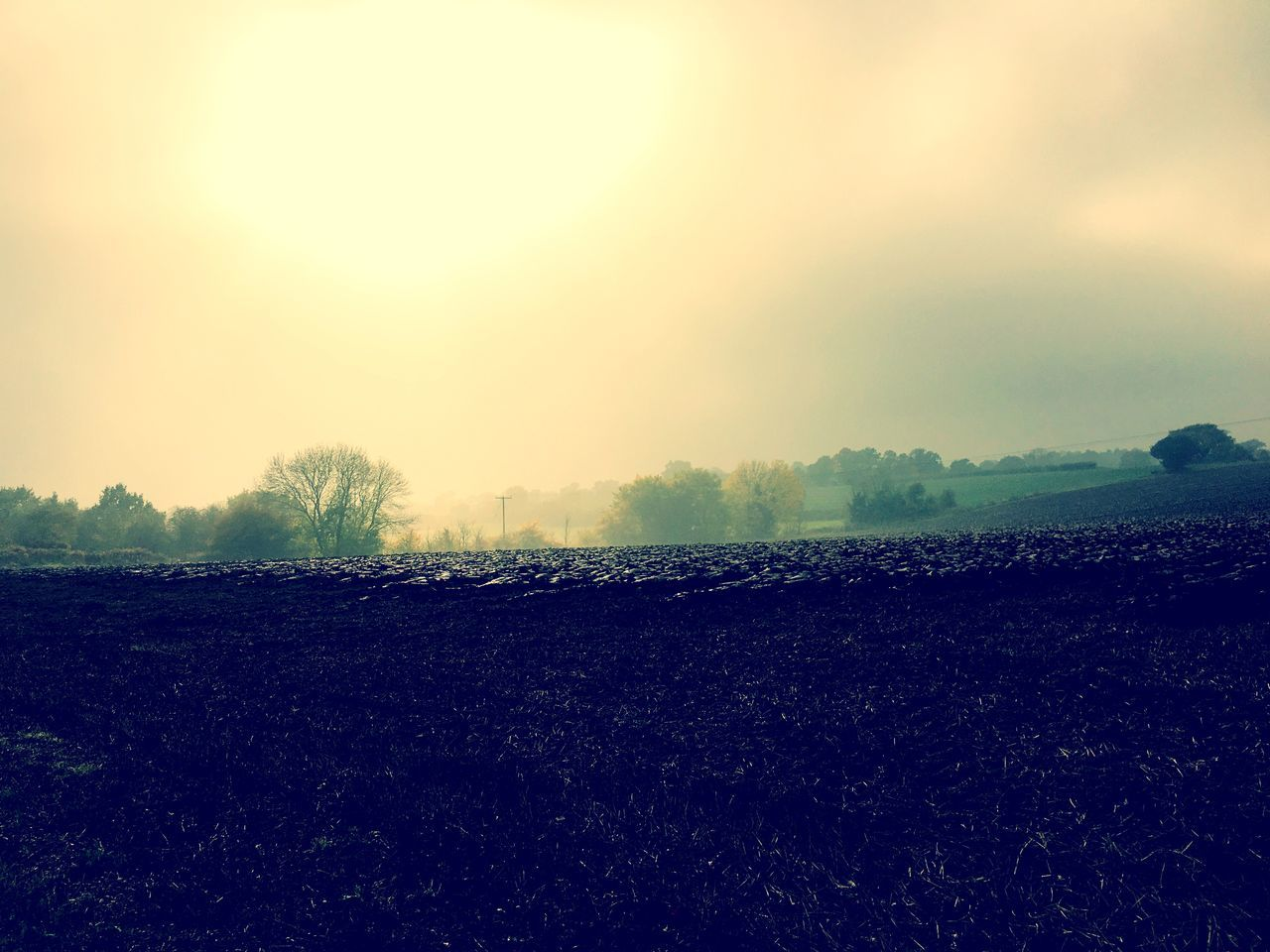 landscape, field, agriculture, tranquility, tranquil scene, nature, beauty in nature, scenics, rural scene, plough, outdoors, no people, sky, tree, day, fog, plowed field