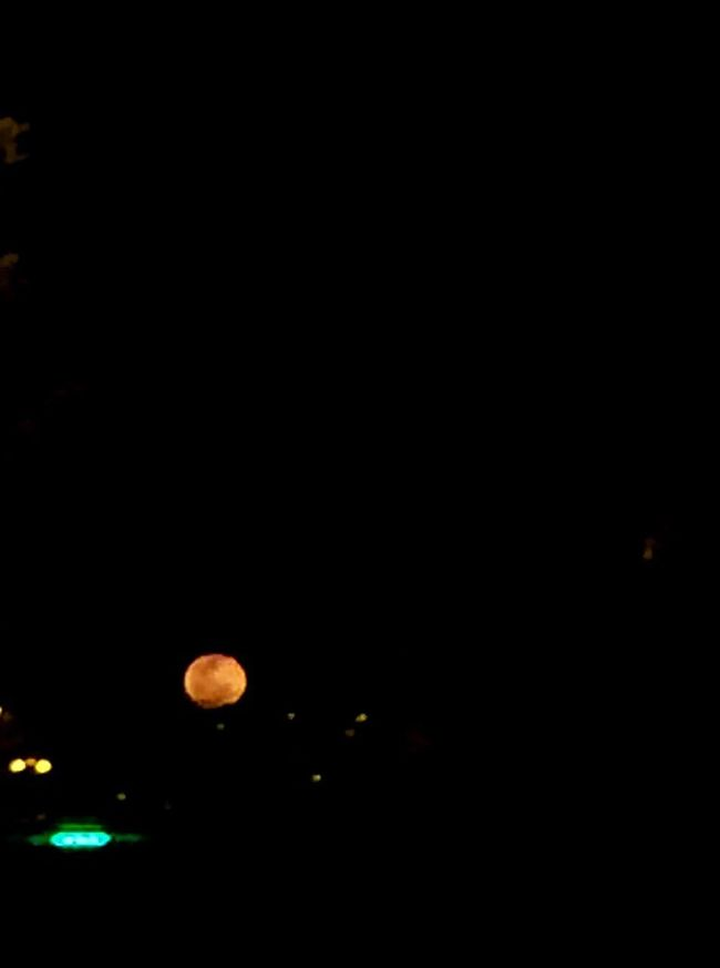 Red Moon REDMOONOW Colour Of Life Showcase August 2016 My City Is Beautiful EyeEm Best Shots - Nature
