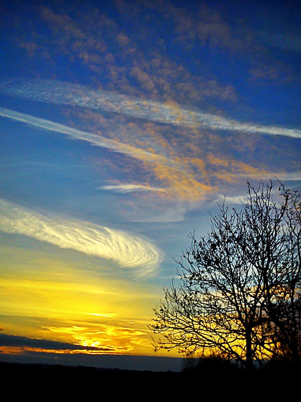 sunset, silhouette, beauty in nature, scenics, nature, tranquil scene, tranquility, sky, majestic, orange color, cloud - sky, tree, no people, yellow, bare tree, outdoors, landscape, vapor trail, day