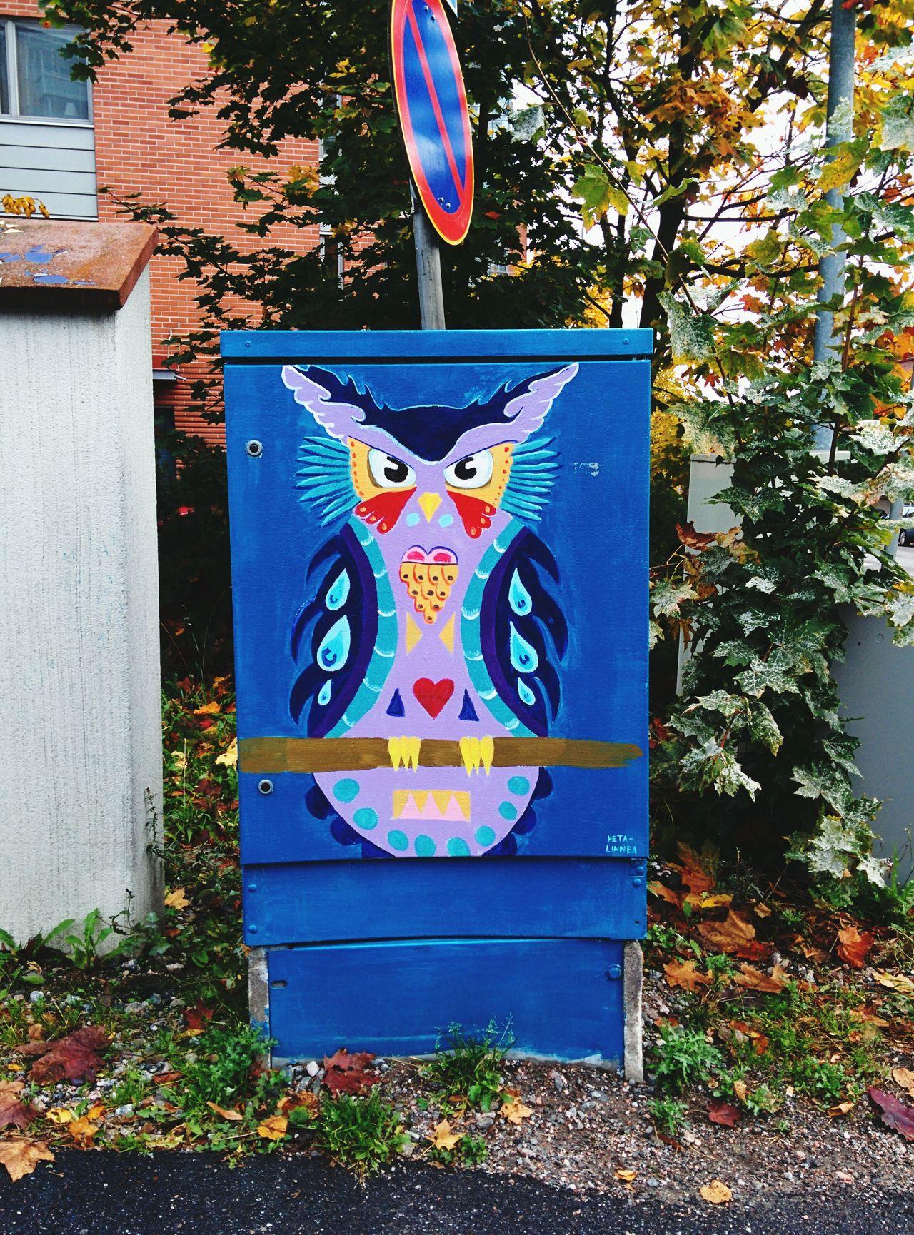 Street Art Owl Helsinki Look What I Found