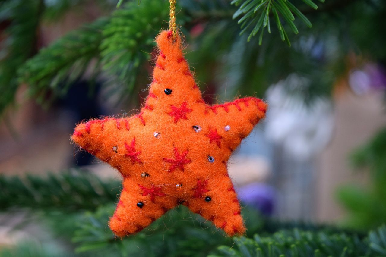 Christmas Christmas Tree Green Color Christmas Decoration Tree Outdoors Tree_collection. Christmas Market Christmas Decorations Christmas Around The World Showcase December The Places ı've Been Today Autumn 2016 December 2016 From My Point Of View Tree Childhood Stuffed Toy Bokeh Orange By Motorola