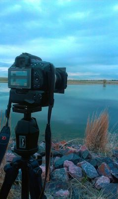 at Rocky Mountain Arsenal National Wildlife Refuge by John De Bord