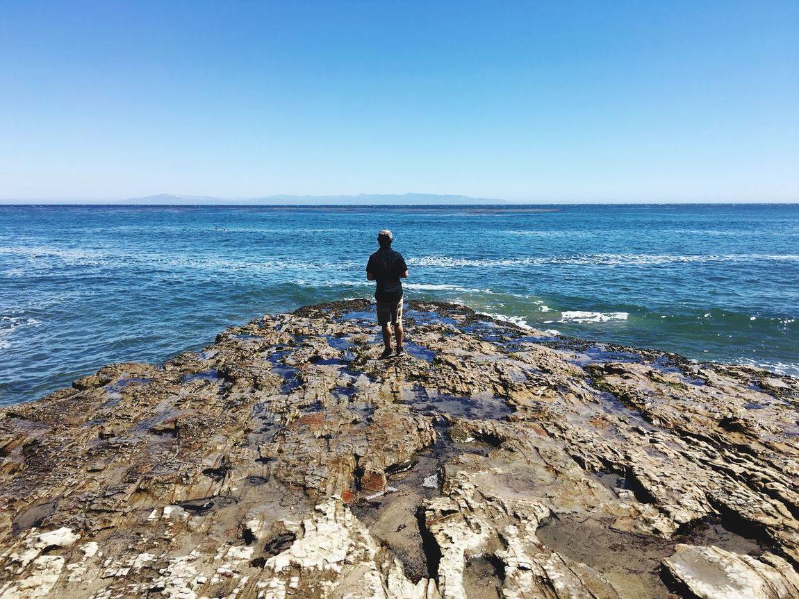 Ocean Tide Pools Pacific Ocean Natural Bridges State Beach Santa Cruz California United States Man