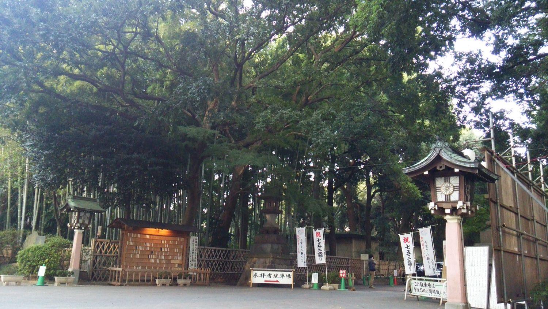 大宮八幡宮 Shrine Landscape