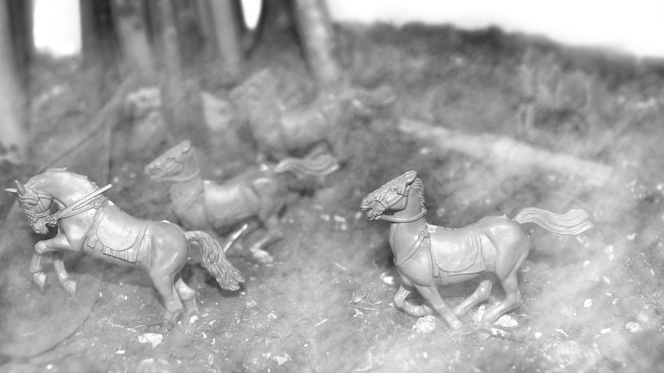 Animal Black & White Black And White Blackandwhite Blackandwhite Photography Blackandwhitephotography Close-up Fog Foggy Horse Riding Horses Miniature Selective Focus Toy Toys Apocalypse Horses Apocalypse Unicornio Apocalypse