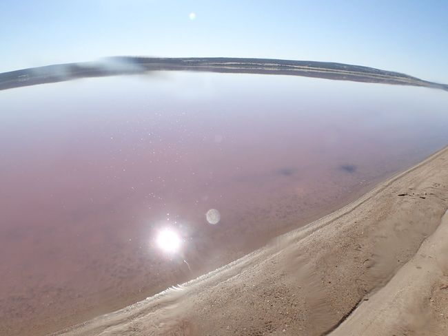 Australia EyeEm Nature Lover Eyeemgallery Fish-eye Lens Landscape Light Nature Pink Pinklake Sun Sunreflection Water WesternAustralia