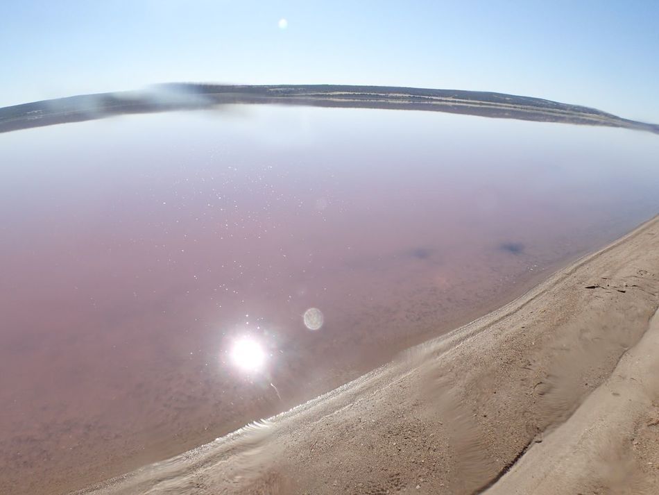 Australia EyeEm Nature Lover Eyeemgallery Fish-eye Lens Landscape Light Nature Pink Pinklake Sun Sunreflection Water WesternAustralia