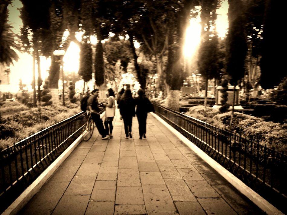 Puebla People Urbam Escape Natural