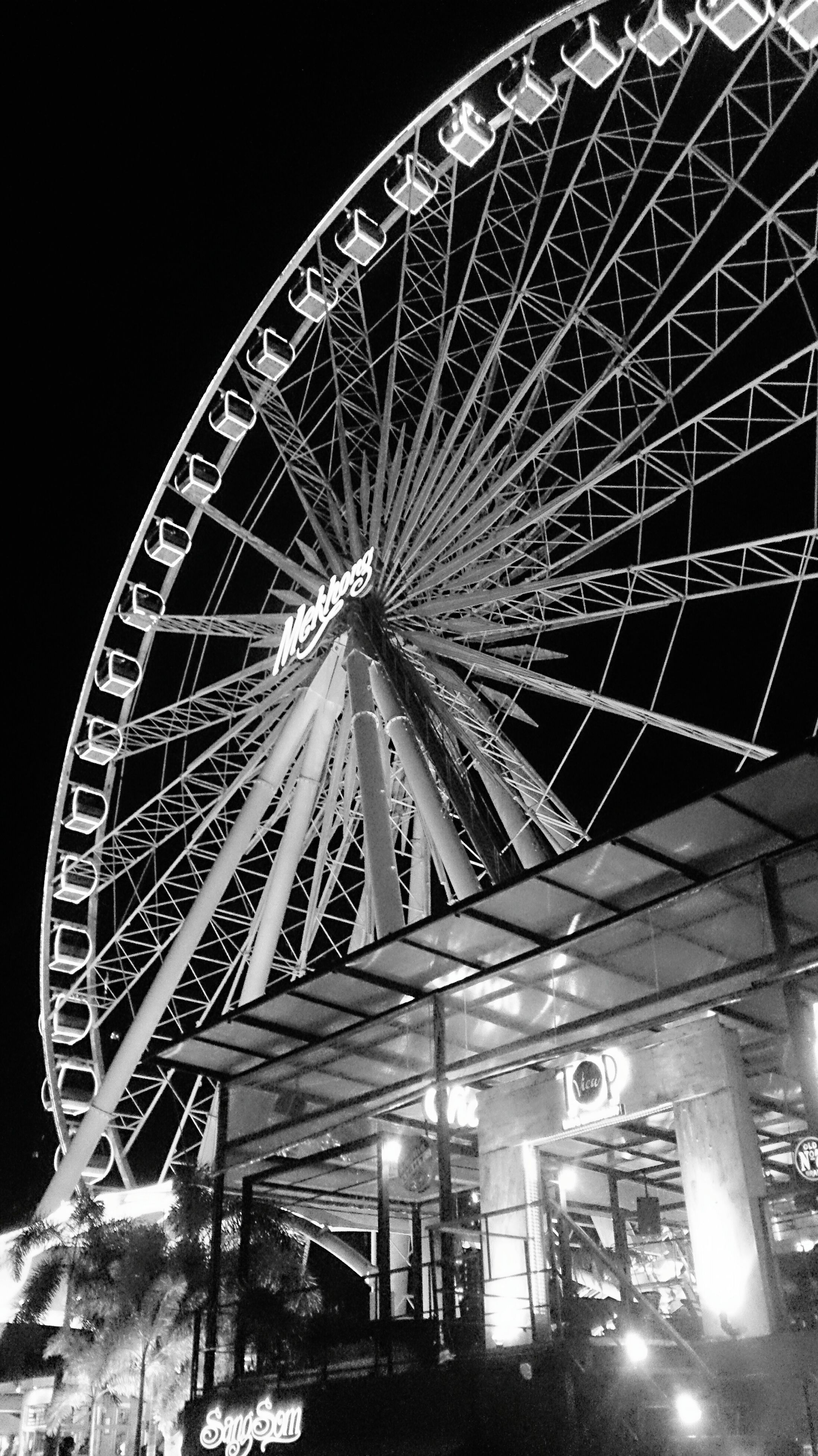 low angle view, built structure, architecture, ferris wheel, arts culture and entertainment, night, amusement park, illuminated, amusement park ride, building exterior, sky, clear sky, outdoors, no people, lighting equipment, tree, city, dusk, large