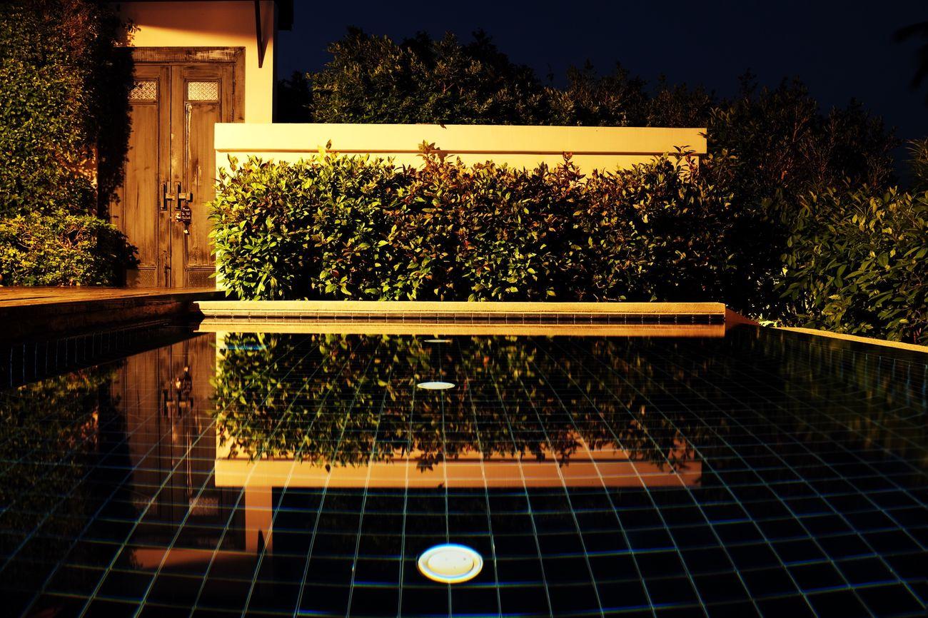 สวัสดีครับ - sàwàddee kráb ~ 28 Tree Nature Tranquil Scene Freshness Water Night Lights Welcome To Black O-Yeah😊😄😆 Pool Travel Holiday Spotted In Thailand Jacklycat®2017 Thank You 🙏 Thailand☀️😊🙏 Thank You My Friends 😊