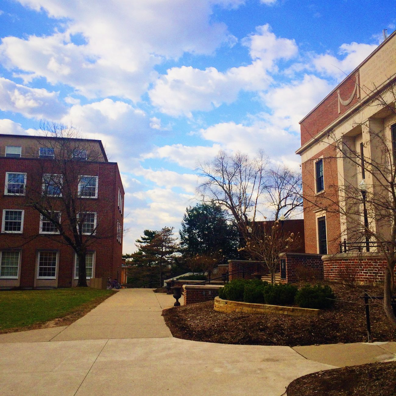 Denison University Check This Out USA OpenEdit Himmel Pathways Go Outside College Collegelife