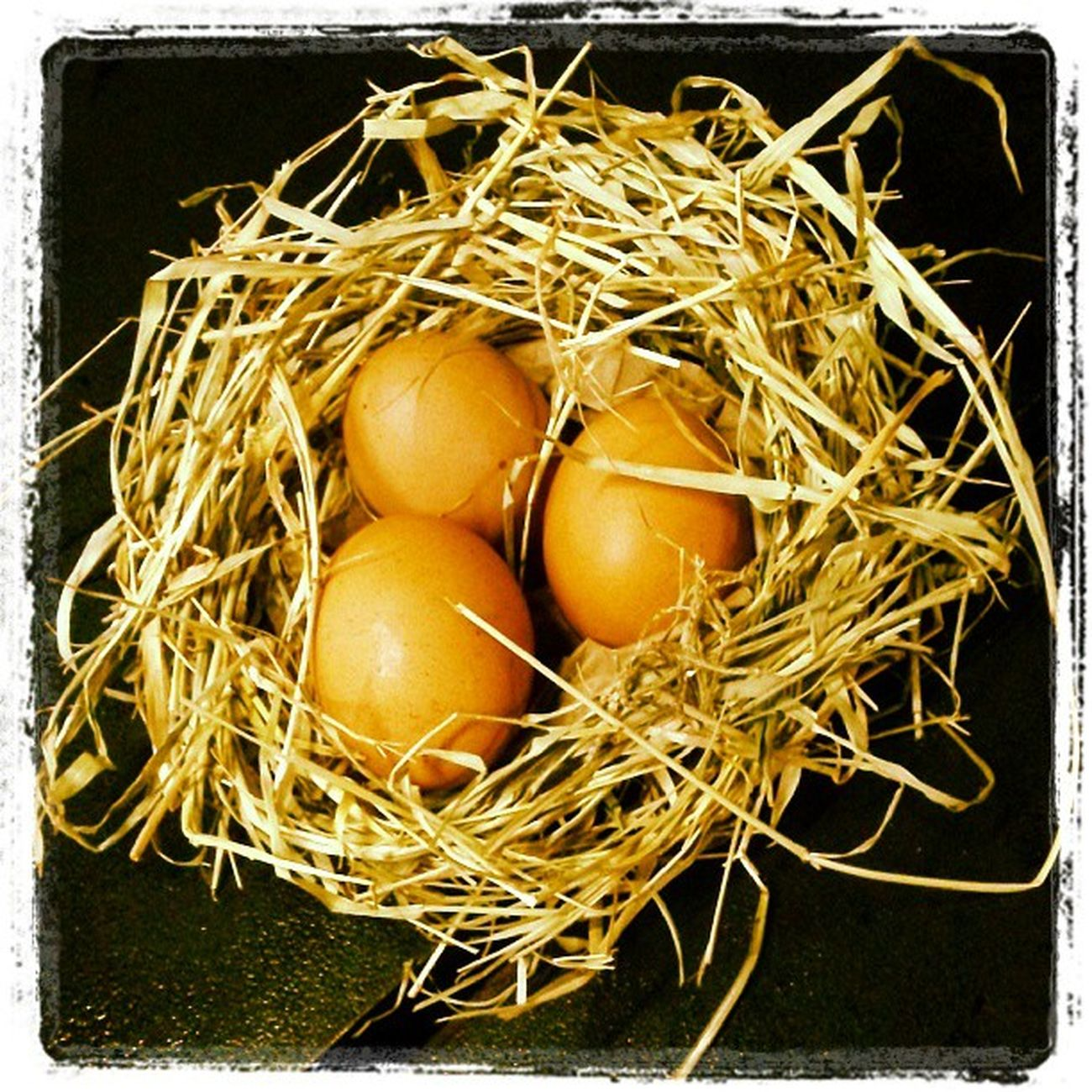 Ovos de galinha caipira, Chicken eggs Animais Galinhas Ovos Chicheneggs eggs aves