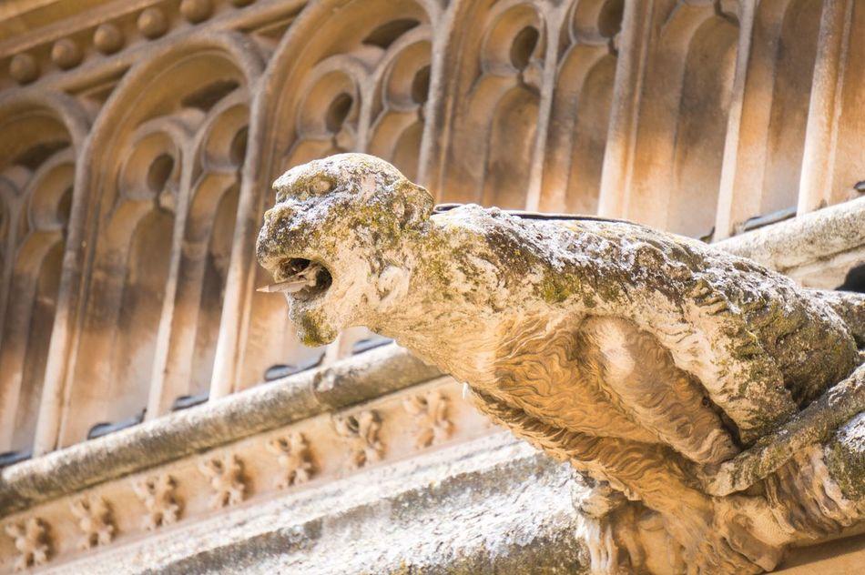 Toledo España SPAIN Gargoyle Architecture Architecture_collection Monster