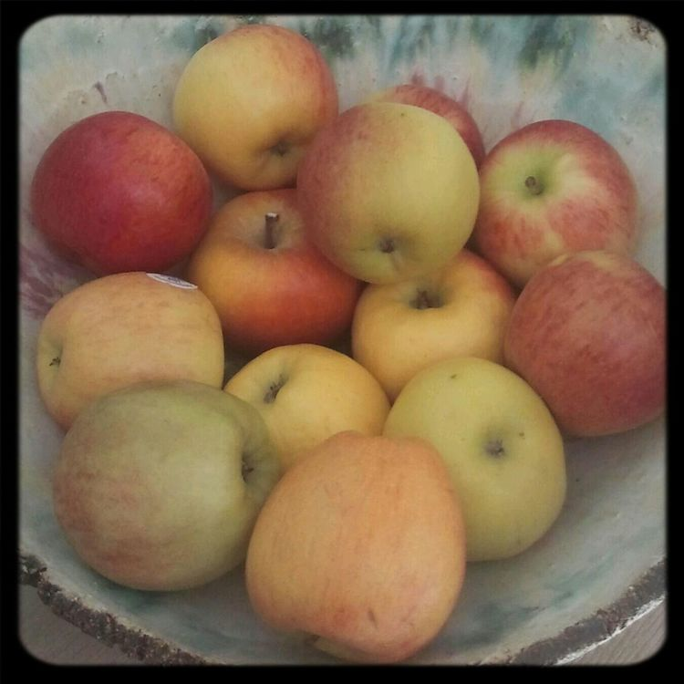 Apples Apple Fruits ♡ Apples:)