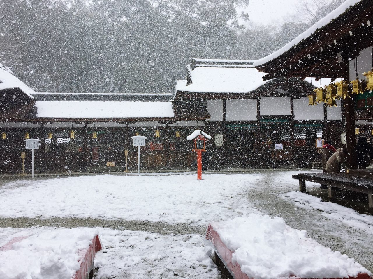 河合神社 Winter Snow Cold Temperature Weather Snowing White Color Nature Covering Beauty In Nature Frozen Snowfall Day Architecture Outdoors Built Structure Real People Warm Clothing Snow ❄ Snowing ❄ Snowing Day Snow