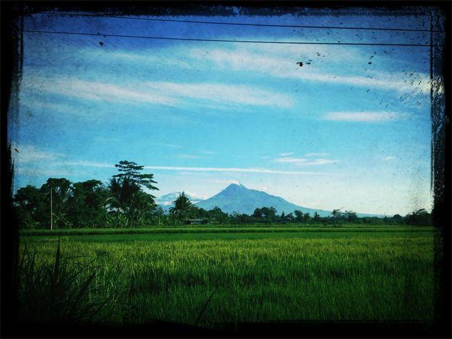 Merapi In The Morning