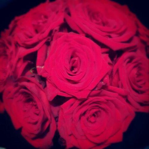 Rose🌹 Flowerporn Blackandred Redporn Roses🌹 Roses Are Red