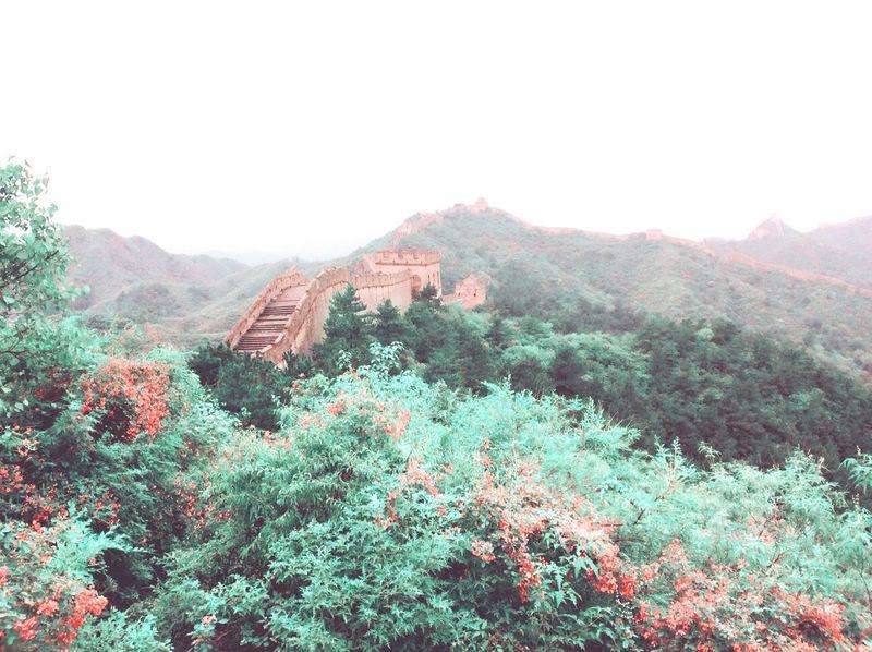 Great Wall Of China China Brick Wall Shrub Defence China History Mongolian
