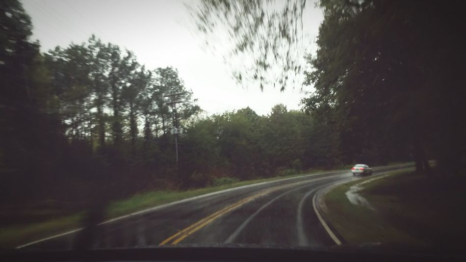 *filtered* Roads Trees RainyDays CarRides Car Driving Weather