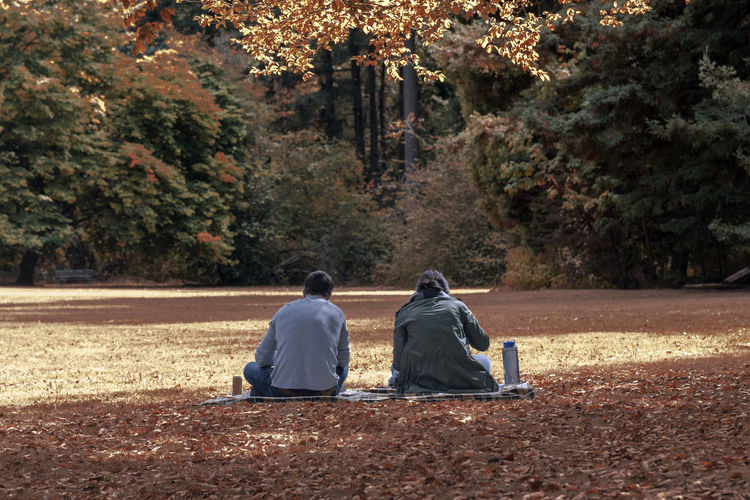 Rear view of a couple sitting in autumn park enjoying a picnic landscape. Apps Autumn Changing Seasons Dating Divorce Goals Rear View Relationship Adult Colorful Day Fighting Foliage Leaves Marriage  Men No Recognizable People Outdoors People Rear View Silent Treatment Tension Tree Two People