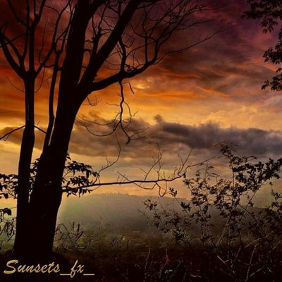 Presenting today's sunsets_fx_ featured artist: kittysoftpaws25 show your appreciation for this outstanding artist by leaving a like and visit their amazing gallery! Photo selected by kaydens_nana For your chance to be featured: follow: sunsets_fx_ tag: #sunsets_fx