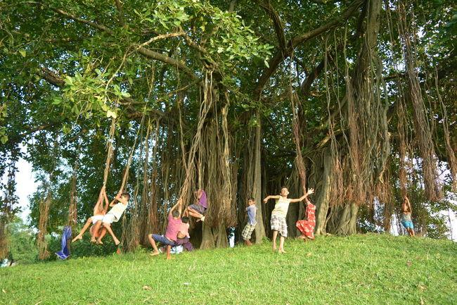 Photo Of The Week Photo Of The Day Photo Of The Month Photo Of 2016 Childhood Memories Children Playing Children Of The World Children_collection Village Life Banyan Tree Banyan Tree India Showcase August
