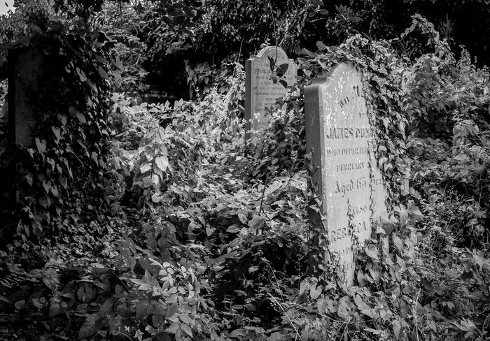 Saint Mary's Churchyard, Gayton, Northamptonshire Northamptonshire Black And White Architecture Chuches