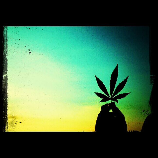 weed Relaxing Weed Bud Letsgethigh