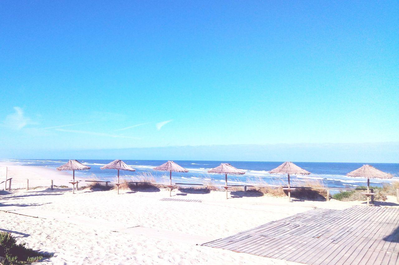 EyeEm Selects Praiadavieira Nature Sea Sunny