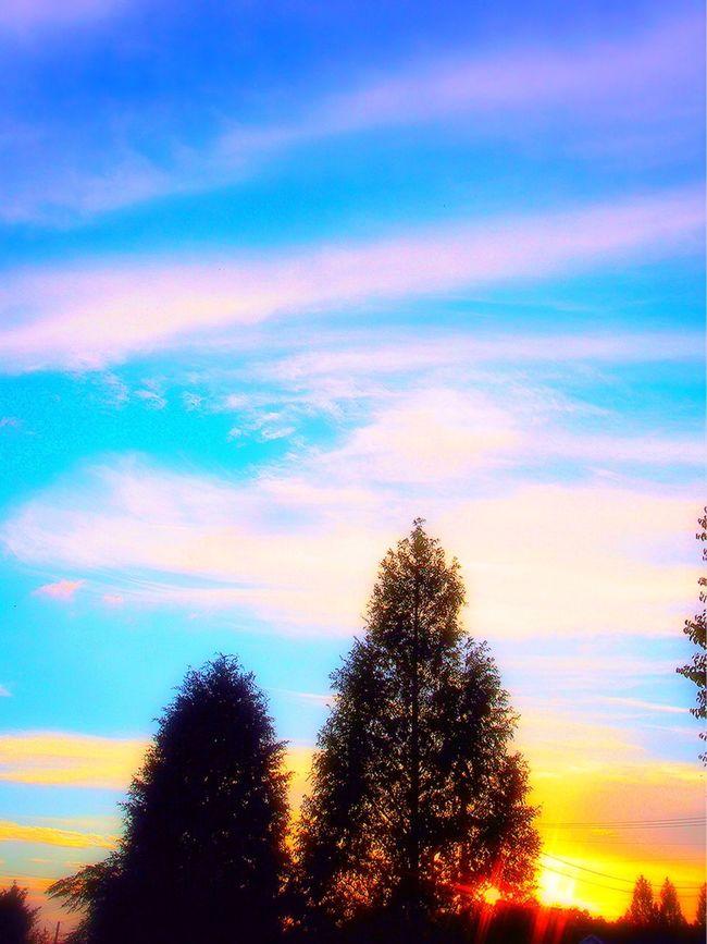 空 夕焼け