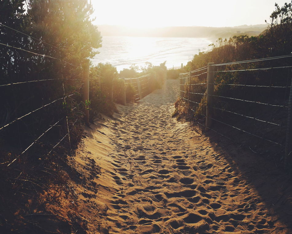 The right path... No People Tree Path In Nature Path To Ocean Path To Beach Travel The Way Forward Sunset Sunlight Day Outdoors Nature Sky Water Sand Peaceful Empty Places Miles Away