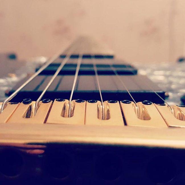 🎸 Melody Shredding @top.tags Toptags Play Gibson Jackson Fender Playmusic Instrument Guitars Guitarist Guitarpick Guitarplayer Guitare L4l Guitar Rock Music Guitarhero Guitarsolo Guitaramp Guitarstrings Iloveguitars Ilovemusic Musician musicflow musicismylife musicnotes guitartabs musicislife
