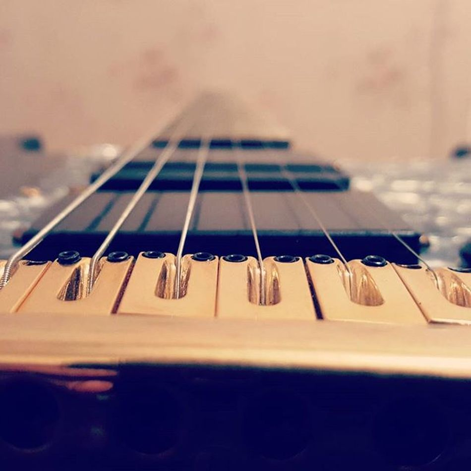 🎸 Melody Shredding @top.tags Toptags Play Gibson Jackson Fender Playmusic Instrument Guitars Guitarist Guitarpick Guitarplayer Guitare L4l Guitar Rock Music Guitarhero Guitarsolo Guitaramp Guitarstrings Iloveguitars Ilovemusic Musician musicflow musicismylife musicnotes guitartabs musicislife