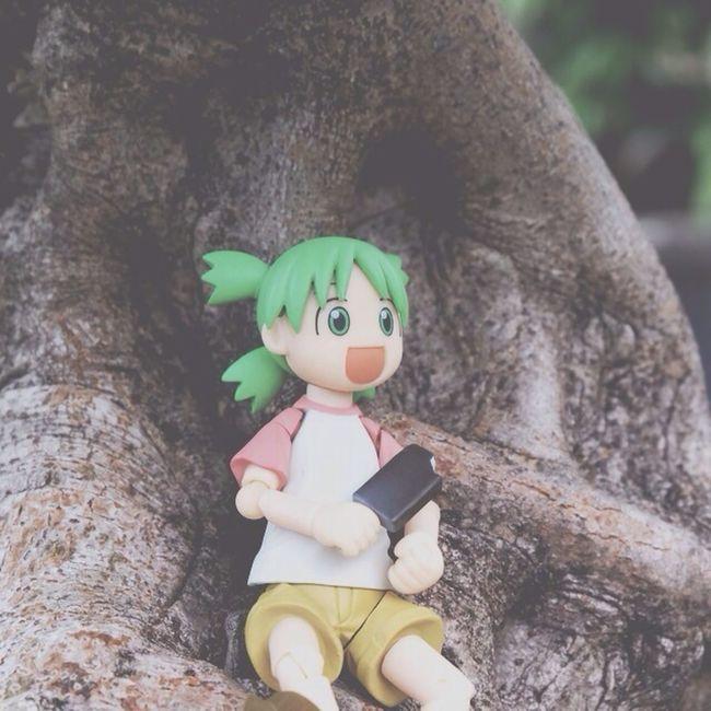 Yotsuba Dolls relax :D