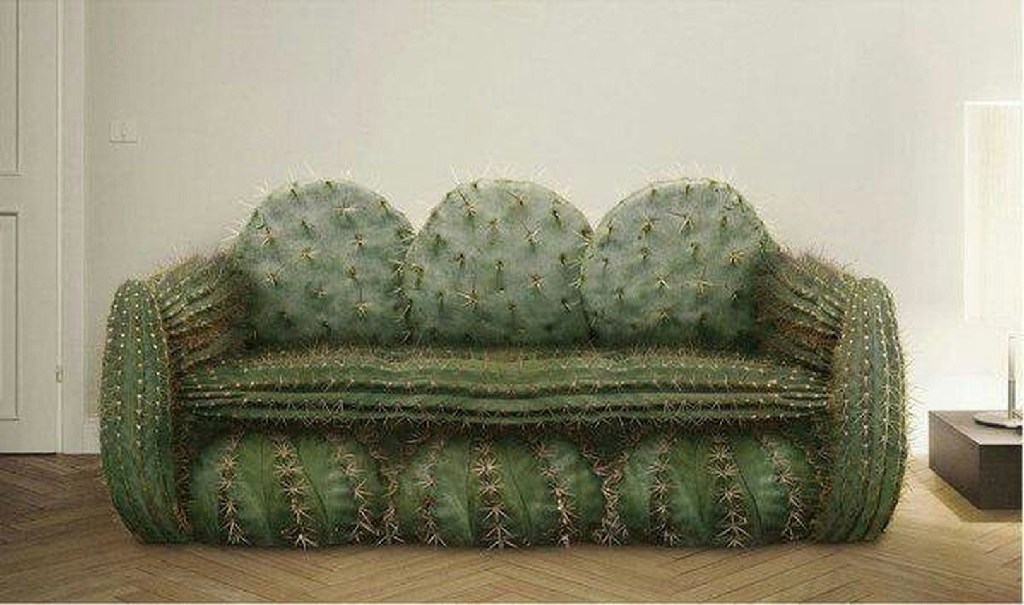 OP Sofa What The Hell What The...  Nice