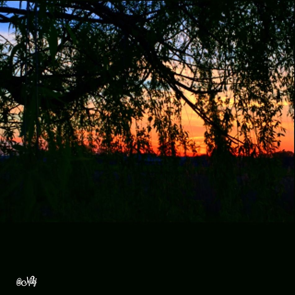 Sunset #sun #clouds #skylovers #sky #nature #beautifulinnature #naturalbeauty Photography Landscape ? Sunset #sun #clouds #skylovers #sky #nature #beautifulinnature #naturalbeauty #photography #landscape Particolaristupendi Tramonti_italiani Fotografia