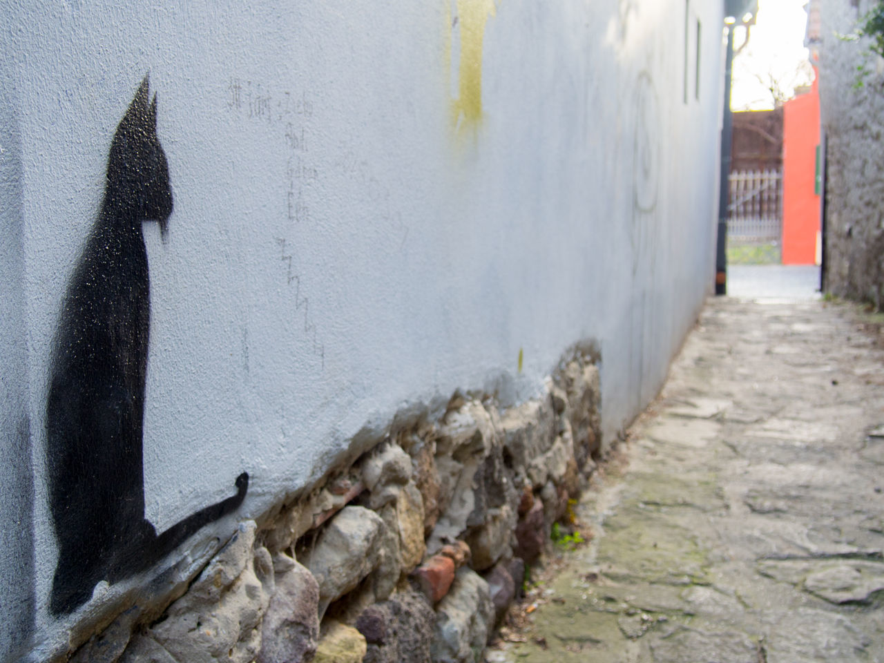 Alley Animal Themes Architecture BLackCat Built Structure Close-up Day Graffiti Lostplaces Modernart No People Outdoors Sightseeing Stones Streetart Streetphotography Urban Wall Wallart Whitewall