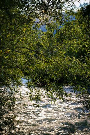 Gorgazzo River Polcenigo Pordenone Friuli Venezia Giulia Italy Travel Photography Travel Voyage Traveling Mobile Photography Fine Art Canon Eos 5d Mark Iii Backlight Nature Fast Water Flows Tree Branches Reflections And Shadows Mobile Editing