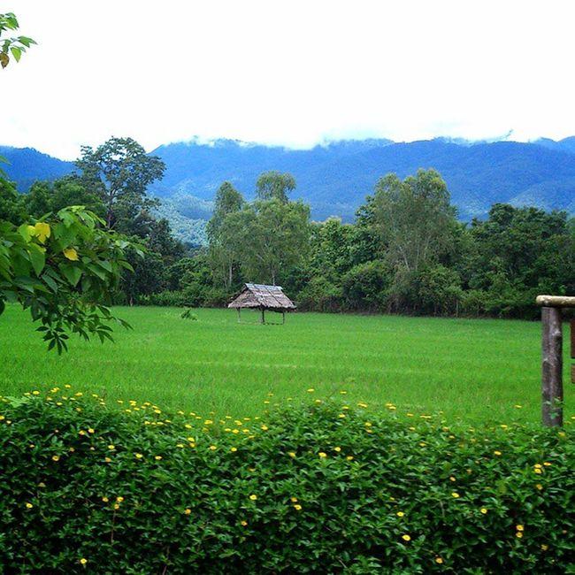 คิดถึงปาย Pai Thailand Maehongson