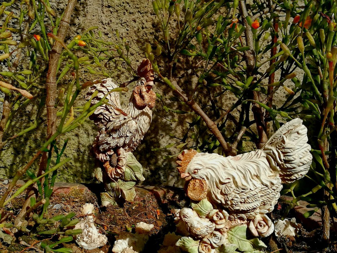Outdoors Nature Animal Themes Garden Domestic Animals Decorations Animal Decoration Chickens Chicken - Bird Rooster Hen Plants Plants And Garden Decorative Ornaments No People Day in San Jose, Costa Rica