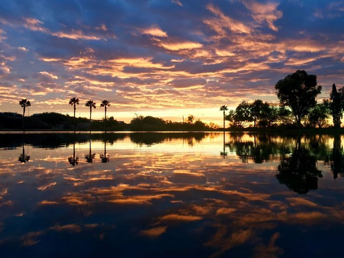 Reflection Sky Water Tree Sunset Nature Scenics No People Tranquil Scene Tranquility Outdoors Cloud - Sky Beauty In Nature Palm Tree Day Sunrise Cloudscape California Vibrant Color Twilight Dusk Palm Trees Silhouette Lake Pond