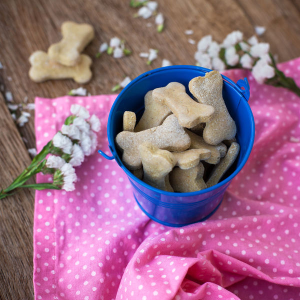 Dog cookies in the form of bones Baking Bone Cookies Bones Cookie Cookies Cooking Decoration Dog Dog Food Dog Lover Dogs EyeEm Best Shots EyeEm Gallery Flowers Food Food And Drink Home Kitchen Pastry Puppy