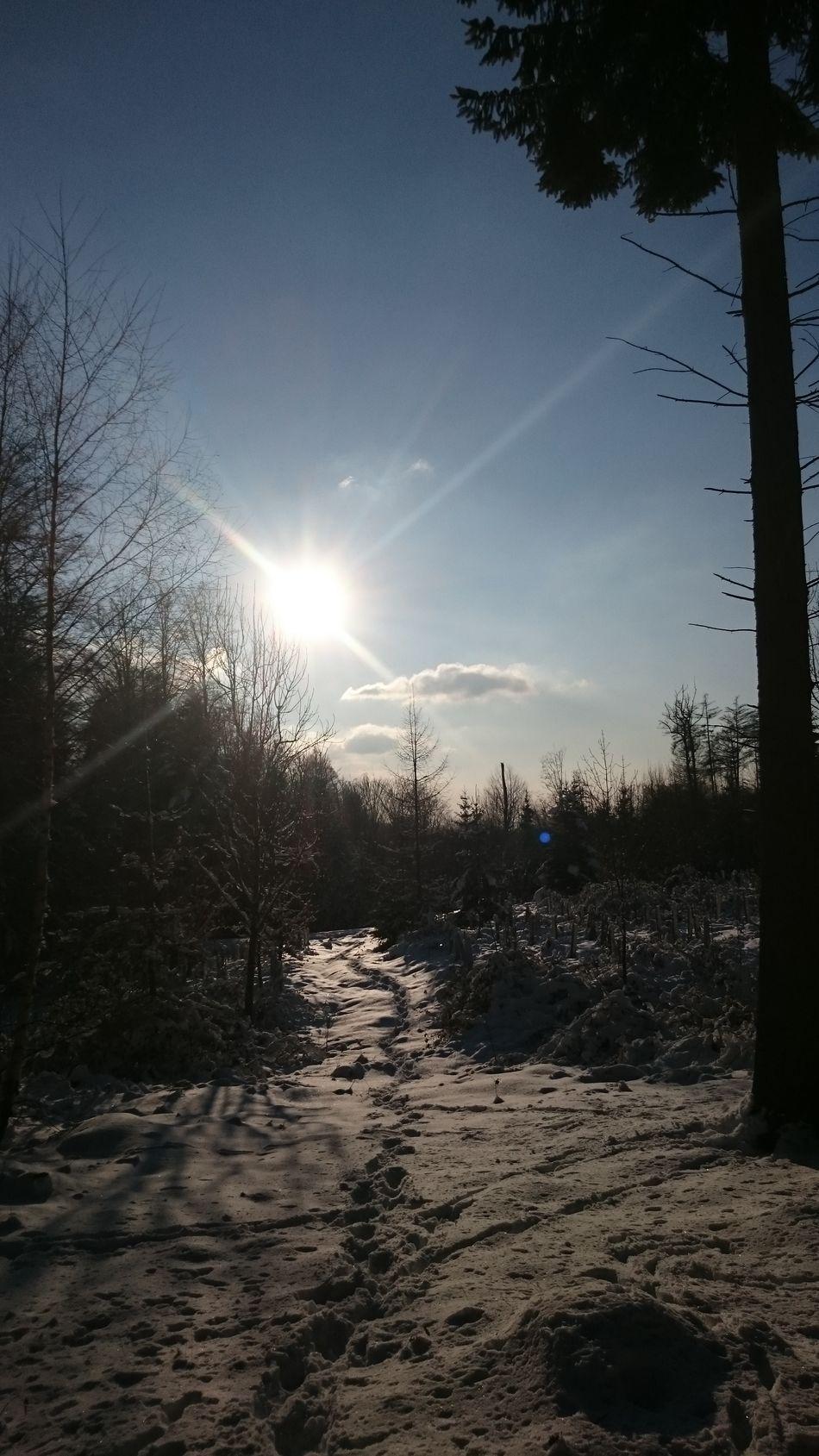 Winterscapes Wintertime ⛄ Winter Wonderland Winter Landscape Winterwald Snow ❄ Schnee Schwarzwald Black Forest