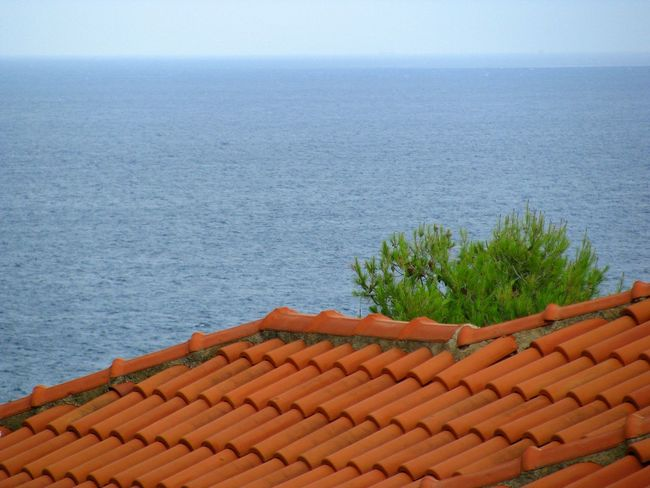 Red Roof against the Sea. Red Tiles Shades Of Blue Shades Of Red Pine Tree Blue Horizon Greek Islands Architecture Traditional Architecture Blue Sea Color Palette Colour Of Life Greek Village Minimalism Minimalobsession Minimalist Village View Roof House House Roof